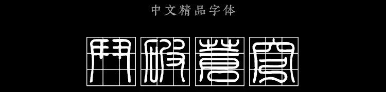 金梅印篆九宫实心