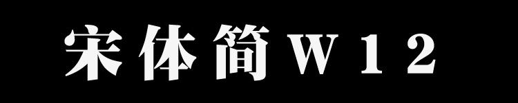華康宋體簡W12
